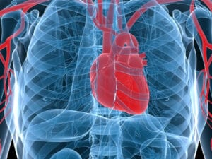 Senior Care in Beech Grove IN: Things to Know About Afib